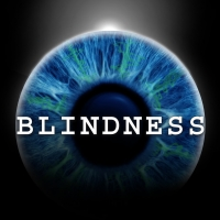 BLINDNESS Begins Final Two Weeks at the Daryl Roth Theatre Photo