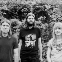 Country Westerns Announce Covers EP for Fat Possum Photo