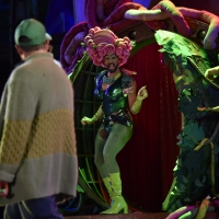 BWW Review: LITTLE SHOP OF HORRORS at Orlando Shakes Photo