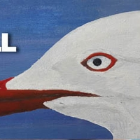 The Silver Gull Play Award Shortlist Announced Photo