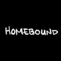 BWW Video: Round House Theatre Premieres New Webseries Homebound Photo
