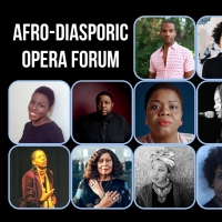 International Contemporary Ensemble Hosts Afro-Diasporic Opera Forum Photo