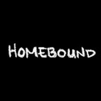 BWW Video: The Tenth and Final Episode of Round House Theatre's Webseries Homebound Photo