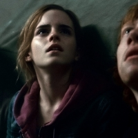 Symphony San Jose Presents HARRY POTTER AND THE DEATHLY HALLOWS, PART 2 Live In Concert Photo