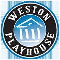 Weston Playhouse Theatre Company Presents A Virtual Evening With David E. Sanger Photo