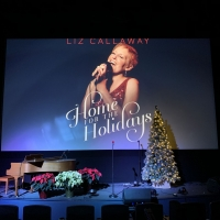 BWW Review: LIZ CALLAWAY: HOME FOR THE HOLIDAYS at Des Moines Playhouse: An Intimate Photo