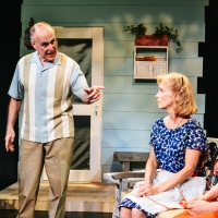 BWW Review: Arthur Miller's ALL MY SONS Examines Accepting Responsibility, Loss, Love Photo