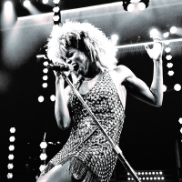 TINA: THE TINA TURNER MUSICAL Sues Insurer for Denying Coverage of Losses After Perfo Photo