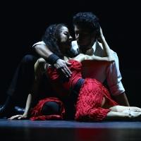 Parasol Arts Presents CARMEN, THE TANGO Photo