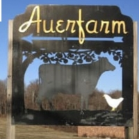 Playhouse On Park Brings Summer Performances To Auerfarm In Bloomfield Photo