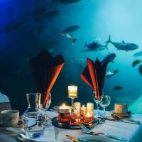 National Marine Aquarium Announces New October Dates For Dining At The Aquarium Photo