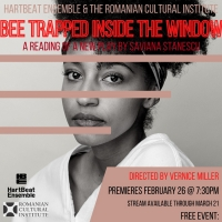 Saviana Stanescu's Provocative New Play About Domestic Slavery Presented On-Demand By Photo