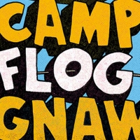 Tyler the Creator, Solange, YG, Juice WRLD Will Headline Camp Flog Gnaw Carnival