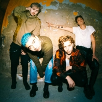 5 Seconds Of Summer Shares Video For New Single 'Wildflower'