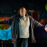 Rattlestick, ALL ARTS, and 7 U.S. Theaters Unite to Premiere Dael Orlandersmith's UNTIL TH Photo
