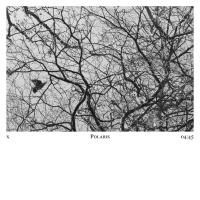 Damon Albarn Releases New Track 'Polaris' Photo