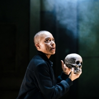 BWW Review: HAMLET, Young Vic Photo