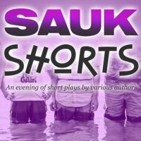 Cast Announced For SAUK SHORTS at The Sauk Photo