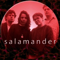 Previously Unreleased Album by Salamander, 1993, is Out Now