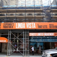BWW TV: On the Red Carpet for Opening Night of LINDA VISTA Photo