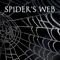 Shannon Condon Promotes Crime Thriller SPIDER'S WEB Photo