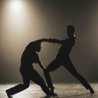 BWW Review: BWW REVIEW:  OPERA BALLET VLAANDEREN BRINGS CONTEMPORARY DANCE TO NYC at  Photo