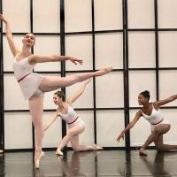 Neville Dance Theatre Announces 16th Anniversary Year Celebration BEETHOVEN & BALLET Photo