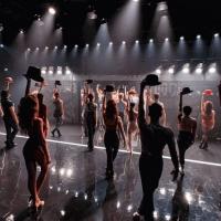 Darlinghurst Theatre Company Postpones A CHORUS LINE