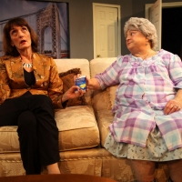 Westport Community Theatre Announces THE TALE OF THE ALLERGIST'S WIFE Photo