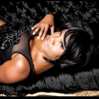 BWW Feature: DENITA ASBERRY IS ARETHA: LESSONS OF LOVE at The Piano Bar Bistro In The Nev Photo