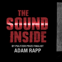 Singapore Repertory Theatre to Present THE SOUND INSIDE Photo