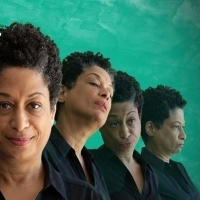 BWW Review: NO CHILD at Great River Shakespeare Festival