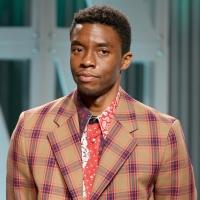 Howard University Renames College of Fine Arts After Chadwick Boseman Photo
