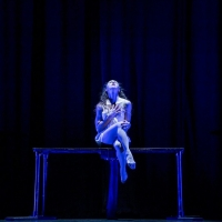 BWW Review: Luminario Ballet and Judith Flex Helle Premiere Dance Film L' INVALIDE at Photo