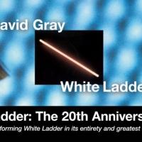 David Gray Announces 'White Ladder: The 20th Anniversary Tour'