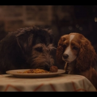 VIDEO: Watch a New Trailer for Live Action LADY & THE TRAMP! Video