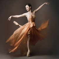 Jillian Vanstone Retires From The National Ballet of Canada After 22 Years Photo