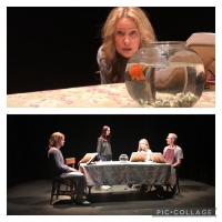 MORE BEAUTIFUL by Craig Lucas to be Presented by Putnam Theatre Alliance Photo