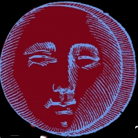 VOTE THE NEW MOON, By Alfred Kreymburg Indicts The System At Metropolitan Virtual Playhouse