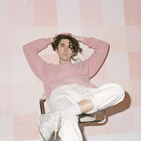 Boy Willows Shares 'Yello House' From 'BANGS' EP Photo