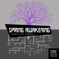 BWW Blog: Marketing SPRING AWAKENING Worldwide Photo
