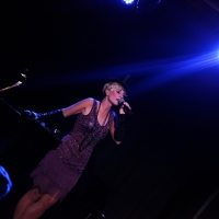BWW Review: Adrienne Haan Lives Comfortably BETWEEN FIRE AND ICE at The Triad Photo