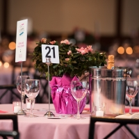 SHARE-A SECOND HELPING OF LIFE on 9/23 at Chelsea Piers Benefits Women Facing Ovarian and Breast Cancer