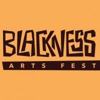 MN Black Theatre Circle to Produce BLACKNESS IS… Arts Festival Photo