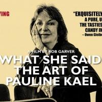Gold Coast Arts Virtual Cinema Series Presents 'What She Said: The Art Of Pauline Kae Photo