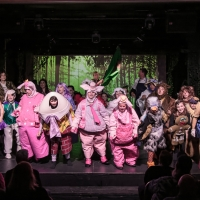 SHREK THE MUSICAL Announced At Florida Academy Of Performing Arts Photo