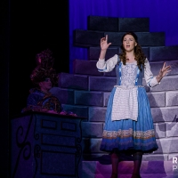 BWW Review: BEAUTY AND THE BEAST at Gooseberry Park PLayers Photo