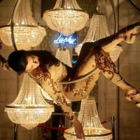 Cirque Du Nuit Will Bring Midsummer Gala to Philadelphia This Summer Photo