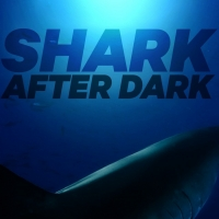 Mark Cuban, Josh Duhamel Among Guests on SHARK AFTER DARK, Hosted by Rob Riggle Photo