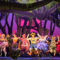 BWW Review: SHREK the Musical at QPAC Photo
